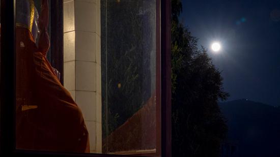 Full Moon on Holi